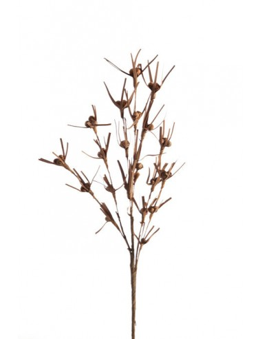 Eurofirany Decorative Flower Grass 22 Brown