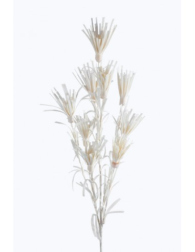 Eurofirany Decorative Flower Grass 24 Cream